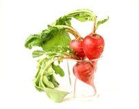 зрелое редиски пука красное Стоковые Изображения RF
