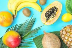 Зрелое сочное манго уменьшать бананы кивиа кокоса папапайи на больших лист ладони на свете - голубой предпосылке Концепция моды л Стоковое фото RF