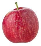 зрелое яблока красное Стоковая Фотография RF