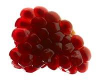зрелое pomegranate красное Стоковая Фотография