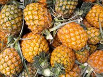 Зрелые ананасы на рынке и предпосылке Стоковые Фото