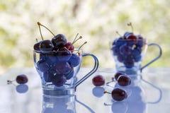 Зрелые вишни в стеклянных чашках Стоковые Изображения