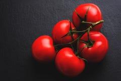Зрелые итальянские томаты на черноте стоковое изображение