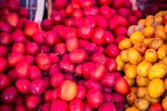 Зрелые красные и желтые сливы Стоковая Фотография RF
