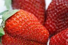 Зрелые красные клубники на белизне Стоковые Фото