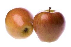 Зрелые красные яблоки Стоковые Изображения RF