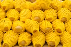 Зрелые манго в желтых мягких крышках пластмассы Стоковое Изображение