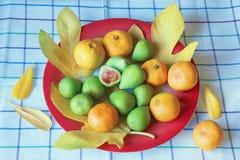Зрелые плодоовощи и tangerines смоквы на плите с желтыми листьями Стоковое Изображение