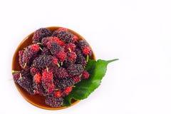 Зрелые плодоовощ ягоды и лист шелковицы в коричневом шаре на изолированной еде плодоовощ шелковицы белой предпосылки здоровой Стоковое Изображение RF