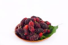 Зрелые плодоовощ ягоды и лист шелковицы в коричневом шаре на изолированной еде плодоовощ шелковицы белой предпосылки здоровой Стоковые Изображения RF