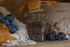 Зрелые сочные сливы на деревенской предпосылке года сбора винограда осени стоковая фотография rf