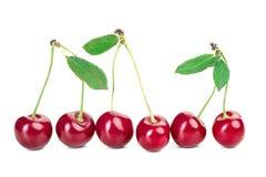 Зрелые сочные ягоды вишни с листьями на белой таблице Стоковое Изображение RF