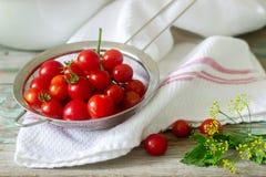 Зрелые томаты вишни, листья сельдерея и укроп, ингредиенты для консервировать на деревянной предпосылке стоковое изображение