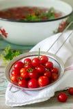 Зрелые томаты вишни, листья сельдерея и укроп, ингридиенты для консервировать на деревянной предпосылке стоковые изображения rf