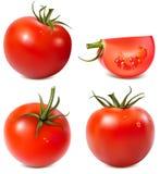 зрелые томаты Стоковое Фото