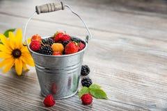 Зрелые ягоды в малом ведре Стоковая Фотография