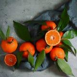 Зрелые tangerines на серой предпосылке План плодоовощ Цитрус Стоковые Фотографии RF