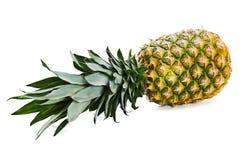 Зрелый весь ананас на белой предпосылке бесплатная иллюстрация