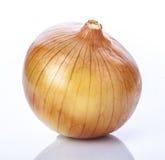 Зрелый лук Стоковое Изображение RF