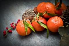 Зрелый оранжевый tangerine Стоковые Фото