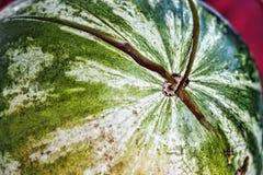 Зрелый, плодоовощ, арбуз, красный цвет, еда, лето, треснул, дыня Стоковое Фото