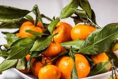 Зрелый плодоовощ мандарина с листьями o плита, на белой салфетке Стоковые Фотографии RF