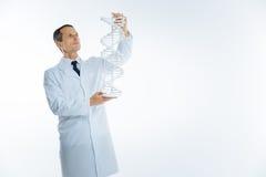 Зрелый ученый рассматривая monochrome модель дна Стоковые Фотографии RF