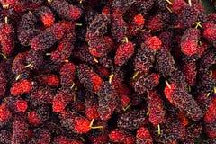 Зрелый Morus шелковицы черн и красн на еде плодоовощ шелковицы белой предпосылки здоровой Стоковые Изображения