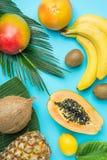 Зрелым сочным уменьшанные вдвое манго бананы кивиа кокоса папапайи на больших лист ладони на голубой предпосылке Релаксация летни Стоковое фото RF