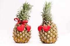 2 зрелых ананаса на космосе экземпляра концепции еды дня валентинок St грейпфрута тропических плодоовощей белой предпосылки зрело Стоковые Фото