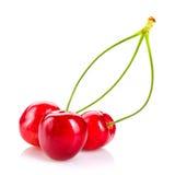 3 зрелых вишни на белой предпосылке Стоковое Изображение RF