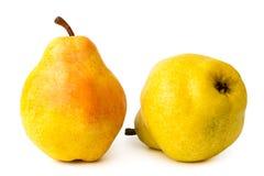 2 зрелых желтых груши на изолированной белизне, Стоковые Изображения