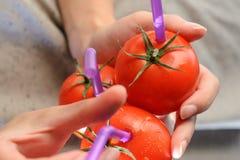 3 зрелых красных томата с соломами в руках Стоковое Изображение