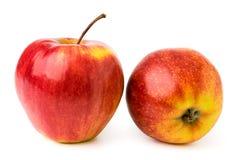 2 зрелых красных яблока на изолированной белизне, Стоковое Изображение
