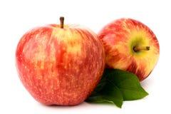 2 зрелых красных яблока с листьями на белизне изолировано Стоковое Изображение