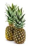 2 зрелых свежих ананаса, изолированного на белизне Стоковое фото RF