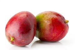 2 зрелых сочных и рт-моча плодоовощ манго с водой падает конец-вверх Стоковое Фото
