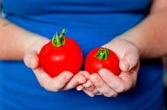 2 зрелых томата в руках Стоковая Фотография