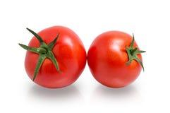 2 зрелых томата изолированного дальше Стоковые Изображения RF