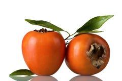 2 зрелых хурмы плодоовощей изолированной на белизне Стоковое Изображение RF