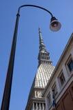 Зрение моли в Турине Стоковое Изображение