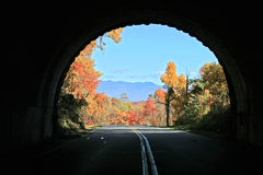 зрение тоннеля осени Стоковое фото RF