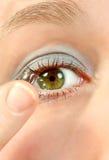 зрение 2 Стоковые Изображения