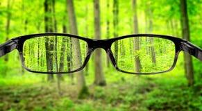 Зрение Стоковая Фотография