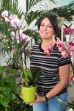 Зрелая женщина выбирая в горшке орхидею Стоковое фото RF