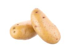 Зрелая золотая картошка на белой предпосылке Вегетарианская еда французско стоковые фотографии rf