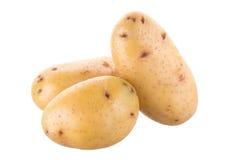 Зрелая золотая картошка на белой предпосылке Вегетарианская еда французско стоковое изображение