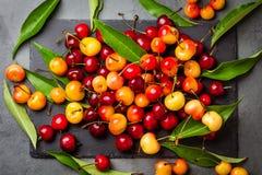Зрелая красная и желтая вишня на плите шифера Взгляд сверху Стоковые Изображения RF