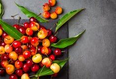 Зрелая красная и желтая вишня на плите шифера Взгляд сверху Стоковые Изображения