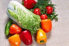 Зрелая паприка и различные овощи заполнены на холсте Стоковая Фотография RF